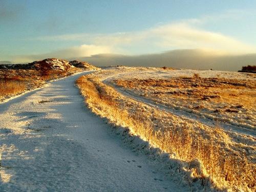 Helen Agarwal - snow